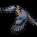 3535-trained-falcon