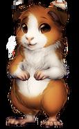213-23-guinea-pig