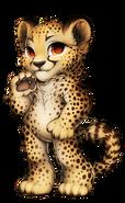 38-10-cheetah
