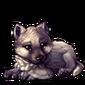 2609-gray-wolf-cub