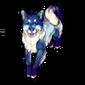 455-blue-doge