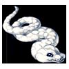 3068-white-cloud-python