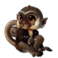 2601-vervet-pirate-monkey