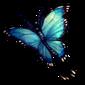 325-moon-butterfly