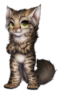 Cat-norweigan