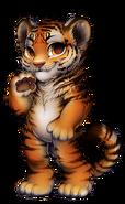 48-10-tiger