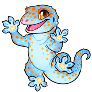Gecko-chibi-tokay