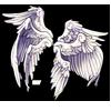 116-seraph-wings