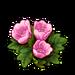 3079-bashful-blossoms