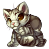 788-maine-coon-cat-plush