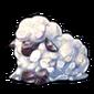 5471-melting-snow-sheep