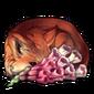 4869-foxyglove-nightshine