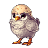 1832-hatchling-meep