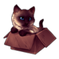 3586-siamese-cat-in-the-box