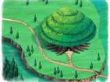 Seed Kingdom