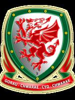 FC Dragons