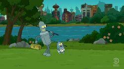 Ben und Bender