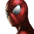 SpiderManIcon