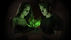 Растение-светлячок Starlight Avatar