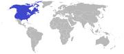 American empire 1