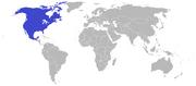 American empire 2