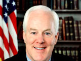 US Senate Elections, 2020 (Joe's World)