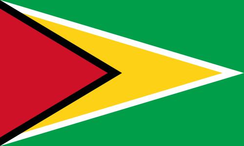 File:Flag of Guyana.png