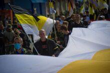 Шествие националистов