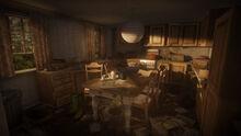 Living conditions - leningrad