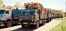 Вывоз леса из Вятки