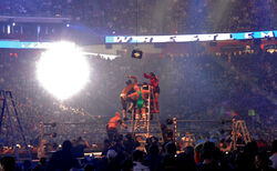 800px-Wrestling on a ladder -- not recommended