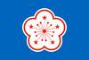 Bandera Taiwan (GP)