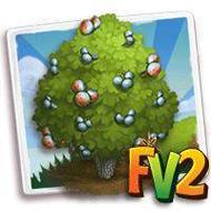 Heirloom Checkerbark Juniper Tree