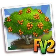Date-Plum Tree