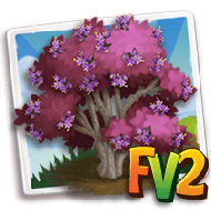Bodinier Beautyberry Tree