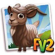 Bronze Guernsey Goat