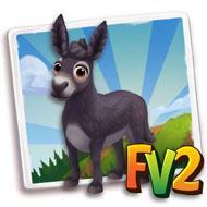 Martina Franca Donkey