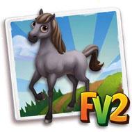 Grullo Horse