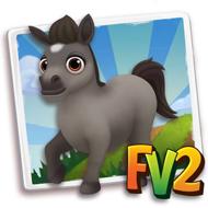Baby Grey Dartmoor Mini Pony