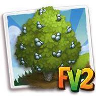Checkerbark Juniper Tree