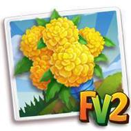 Yellow Marigold Bouquet