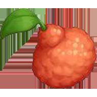 Pixie Mandarin