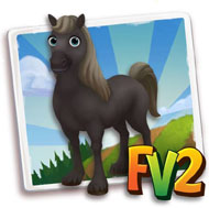 File:Black Fell Pony.png