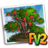 Winterberry Tree