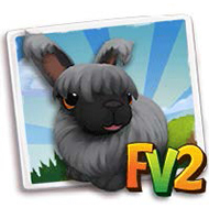 File:Black Angora Rabbit.png
