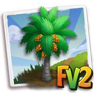 Peach Palm Tree