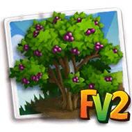 Beautyberry Tree