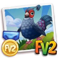 Prized Siamese Fireback Pheasant