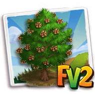 Pinon Tree