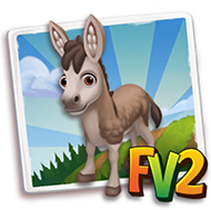 Baby Shinghari Donkey